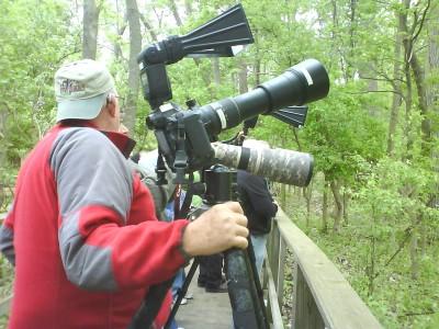 The Biggest Week in American Birding - Oak Harbor Area