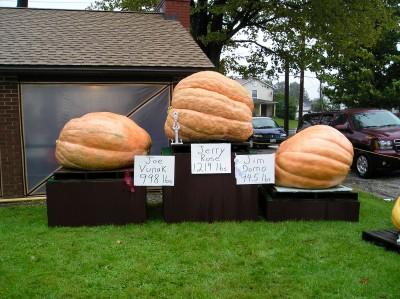 Huntsburg Pumpkin Festival
