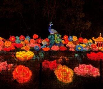 9.) Asian Lantern Festival – Cleveland – September 10, 2021